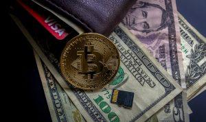 Bitcoin Evolution über den Preis